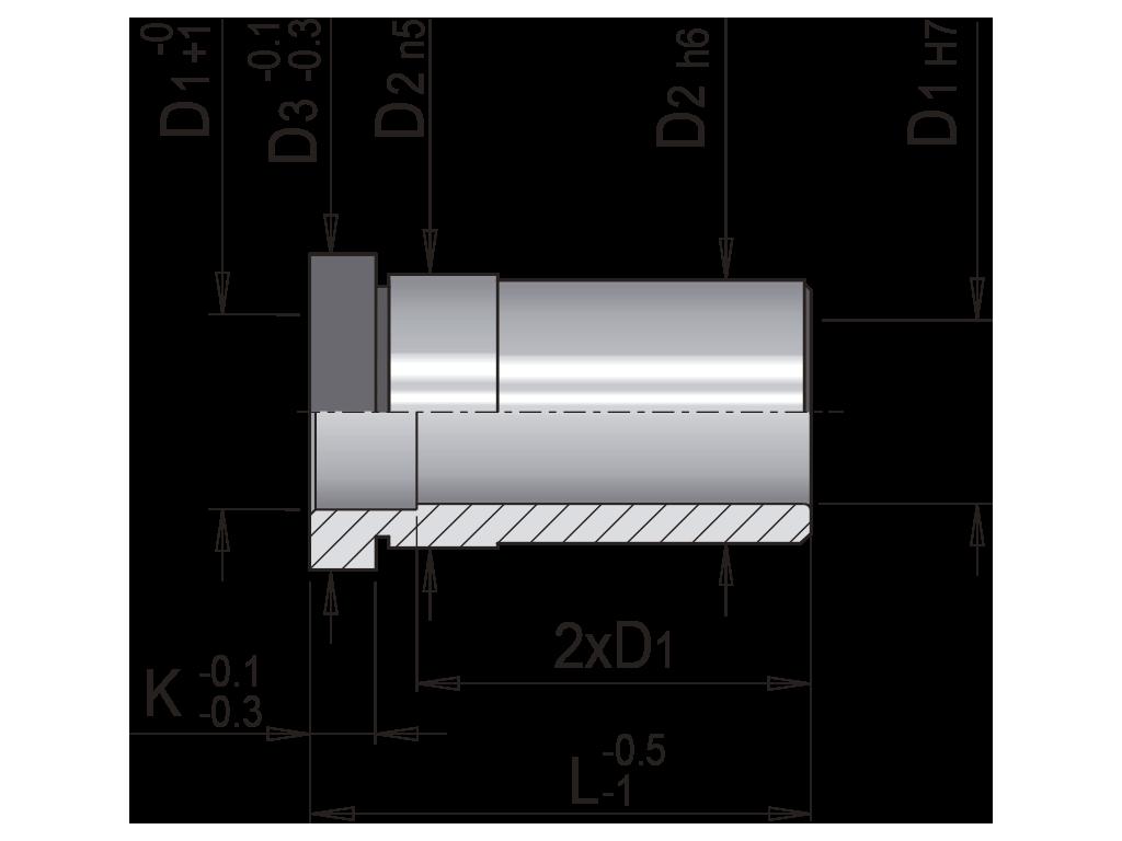 bussola guida con collare EB1
