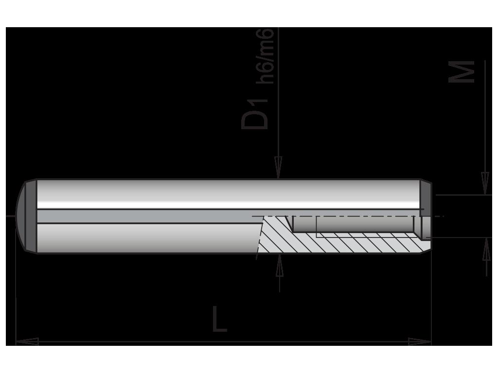 spine cilindriche filettate din 7979 SCF