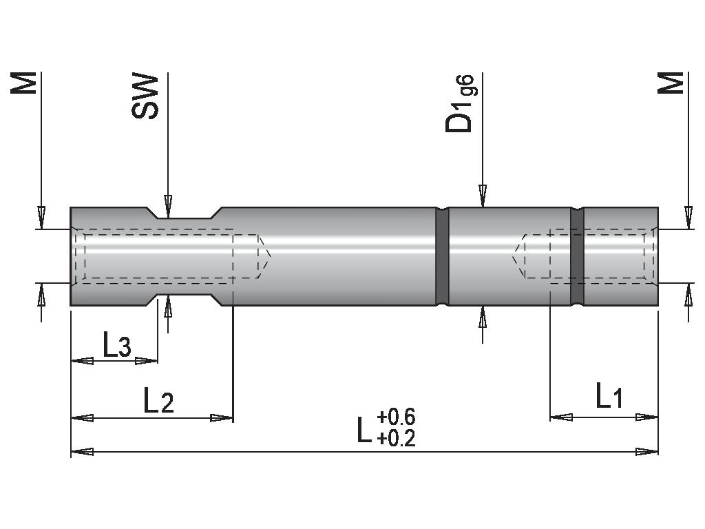 colonna guida per dispositivo di estrazione T50